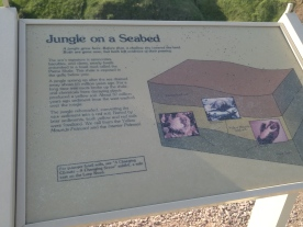 Placard describing the Yellow Mounds formations
