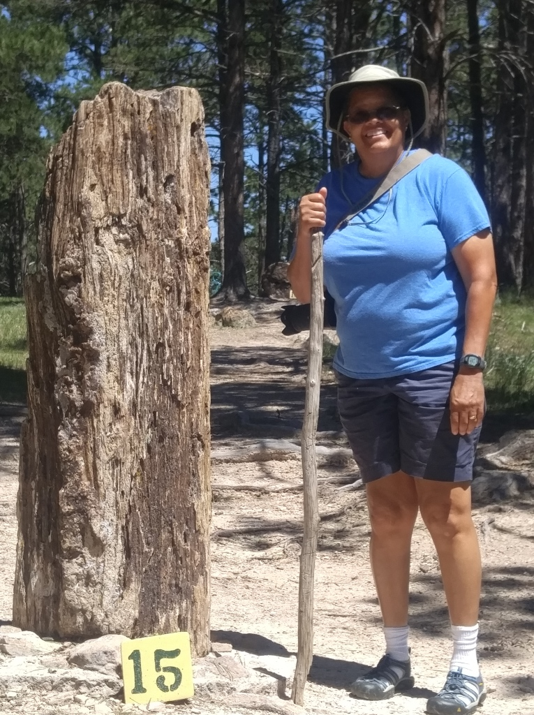 Tallest free standing petrified log on the trail at the Petrified Forest of the Black Hills museum.