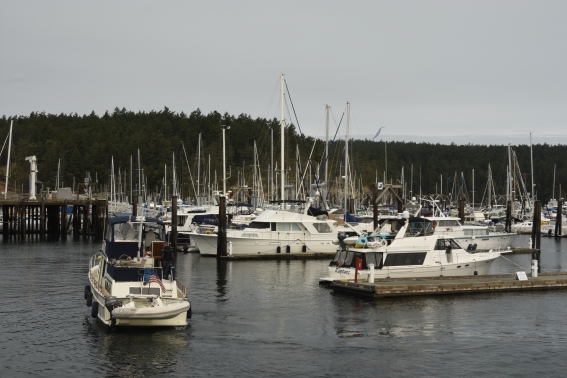 Friday Harbor on San Juan Island, Washington.