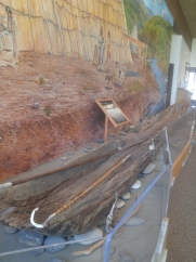 Museum exhibit of dugout canoe in the Nez Perce National Historic Park visitor center