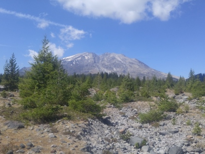 Mount Saint Helens South side as seen from Lahar Viewpoint. Old Lahar track visible in middle of mountain. Mount Saint Helens National Volcanic Monument.