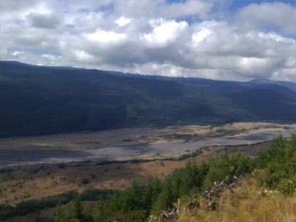 North Fork of the Toutle River. Green side is Weyerhaeuser tree farm. Gray line is lahar (mudflow) from 1980. Thin line in the middle of the gray is the river. Mount Saint Helens National Volcanic Monument.