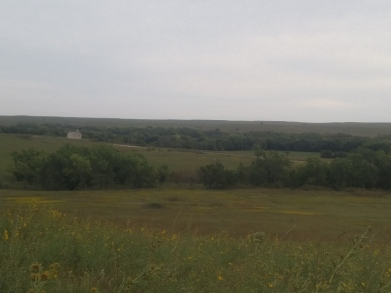 Prairie fields at the Tallgrass Prairie National Preserve.