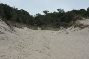 Dune Trail. Indiana Dunes National Lakeshore.
