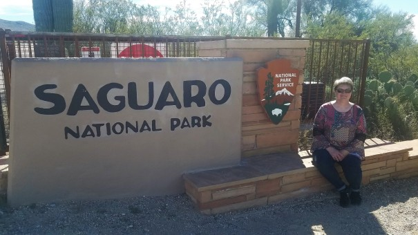 Entrance to the Saguaro National Park.